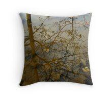 autumn tree reflection Throw Pillow