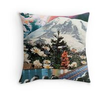 Its dangerous to go alone ... Throw Pillow