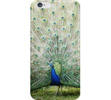 Peacock Cell Case iPhone Case/Skin