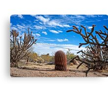 Guarding the Line in the Sonoran Desert Canvas Print