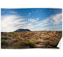 Light After Rain in the Sonoran Desert Poster