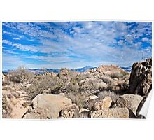 Rugged Sonoran Rocky Top Poster