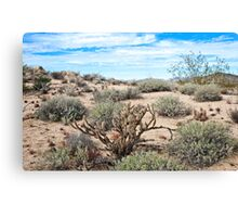 Song in the Key Sonoran Canvas Print