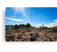 Sonoran Sunlight and the Wash Canvas Print