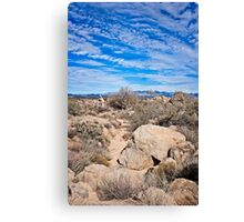 To the Sonoran Sky and Back Canvas Print