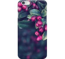 Ordinary Evening iPhone Case/Skin