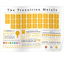 Element Infographics: The Transition Metals Poster