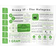 Element Infographics: The Halogens Poster