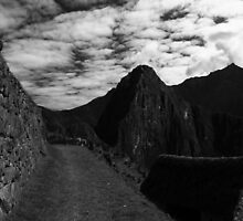 Machu Picchu Black and White by Tim1001