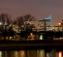 Houston Medical Center by lisapowell