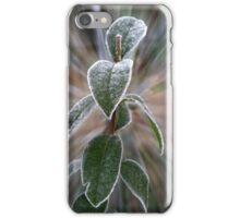 caught by frost iPhone Case/Skin