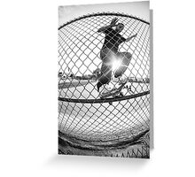 Through the fence. Greeting Card