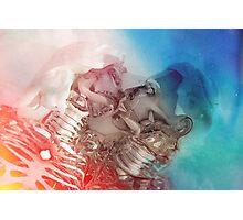 KiKi & CoCo Photographic Print
