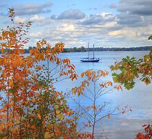 Leaf Peeping at Sodus Bay by Lisa Cook