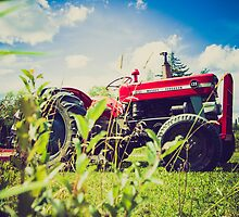 Red tractor / Tracteur rouge by maophoto