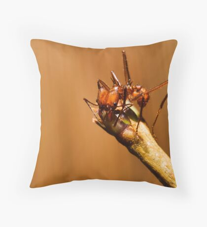 Leaf Cutter Throw Pillow