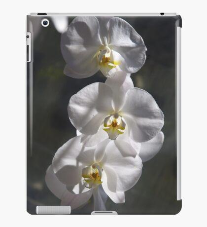 Sunlit Orchids iPad Case/Skin