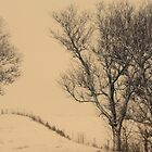 a winter's day lament by JOSEPHMAZZUCCO