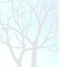 Winter Tree by Morgan Ralston