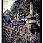 Graveyard, Charleston by Barbara Wyeth