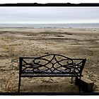 Bench, Sullivans Island Beach by Barbara Wyeth
