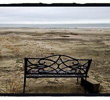 Bench, Sullivans Island Beach by Barbara Wyeth