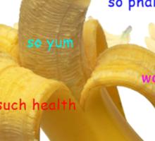 Banana Doge! Sticker