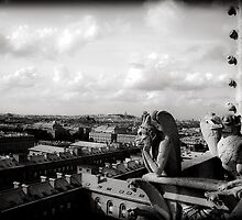 Over looking  Paris by Andrew Wilson