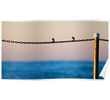 Two birds on a chain Poster