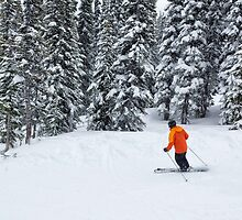 Skier by Charles Kosina