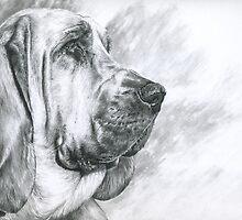 Bloodhound by Neil Dixon