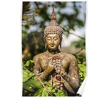 Buddha in nature Poster