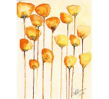 California Poppy Watercolor Photographic Print