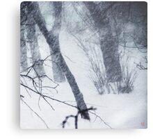 blizzard 2014 Metal Print