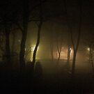 Fog delusions. Andrzej Goszcz. (Brown Sugar). by © Andrzej Goszcz,M.D. Ph.D