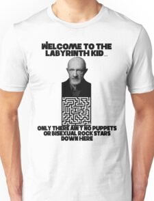 Welcome to the Labyrinth Unisex T-Shirt