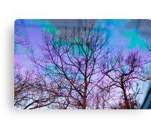 Trees on Oil on Water on Bricks Canvas Print