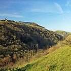 Across The Valley To Dovedale Wood by Rod Johnson