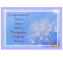 Banner SMP Challenge Winner Photographic Print