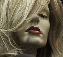 Woman In The Wig Shop by Scott Johnson
