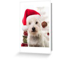 Christmas Dog Greeting Card