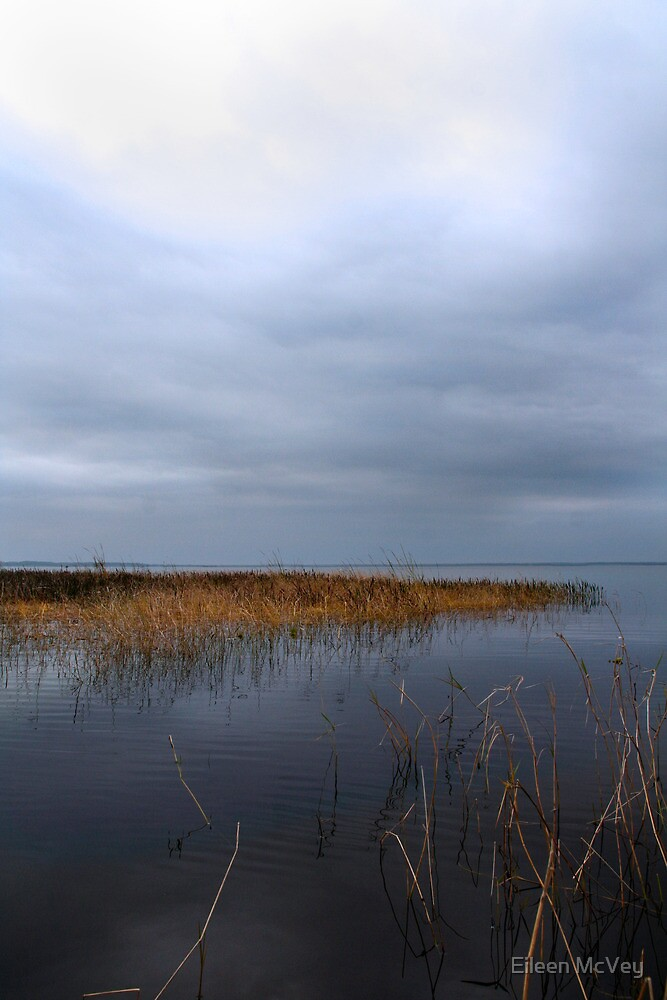 The Lake by Eileen McVey