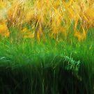 Artscape Reeds 2 by Imi Koetz