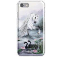 Calm Waters iPhone Case/Skin