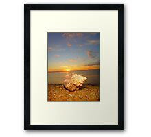 """Shell Shuttle"" Framed Print"