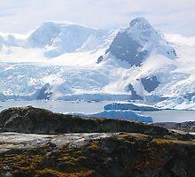 Cierva Cove Antarctica by Carole-Anne
