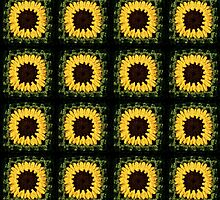Sunflower Blanket by Arianey