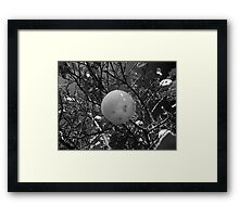 ©GS Limes Monochrome Framed Print
