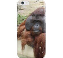 Orangutan at Dudley Zoo iPhone Case/Skin