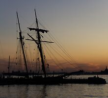 Climbing the Rigging - Sailors Silhouettes at the Hudson River Waterfront, New York City by Georgia Mizuleva